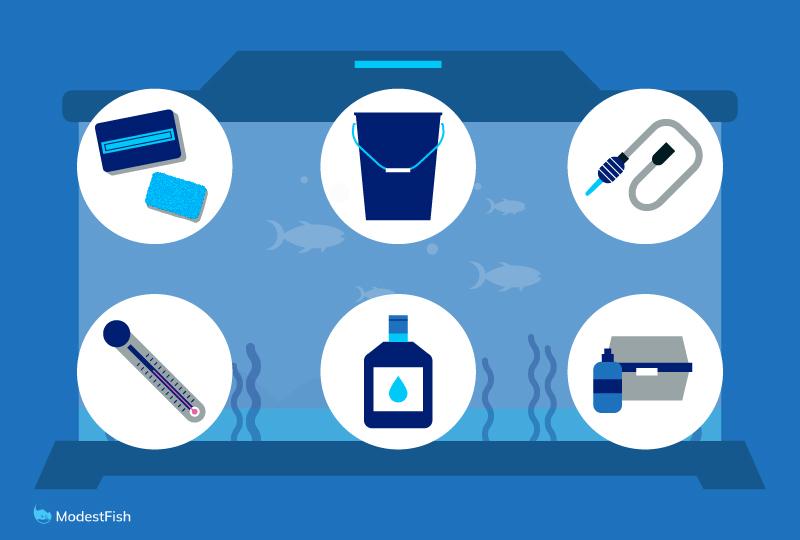 Equipment needed to clean an aquarium