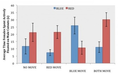graph showing how female betta pay more attention to red bettas over blue based on movement