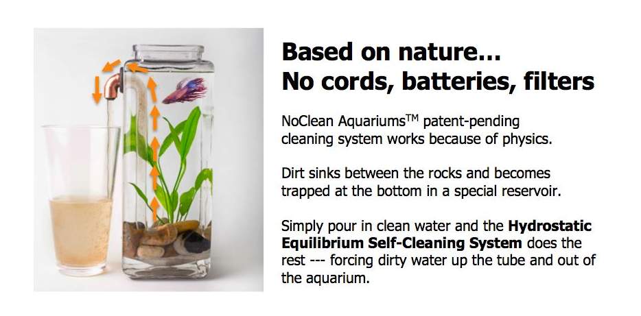 screenshot of noclean aquariums website