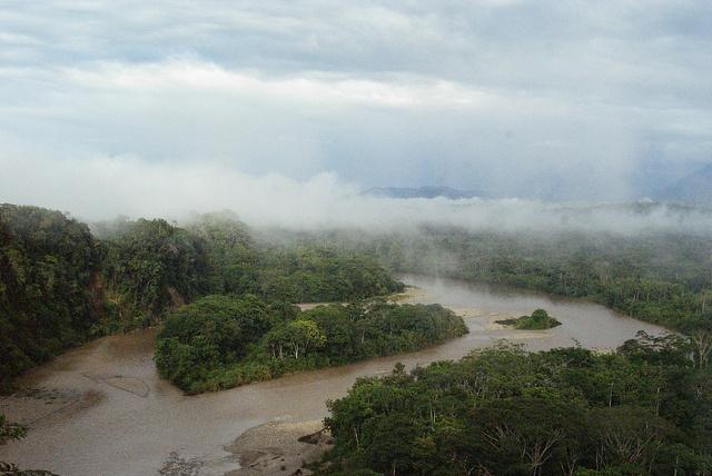 Amazon river basin