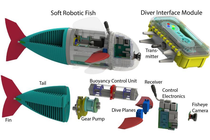 Robo fish parts