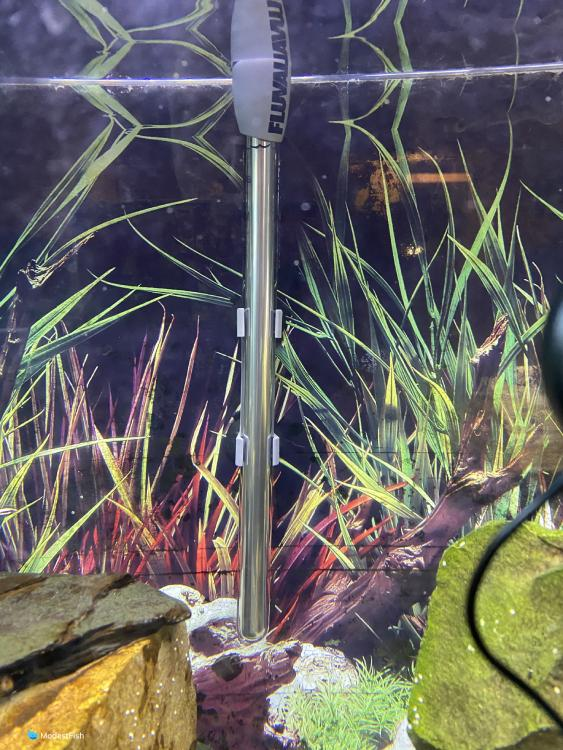 Fluval m200 aquarium heater in fish tank
