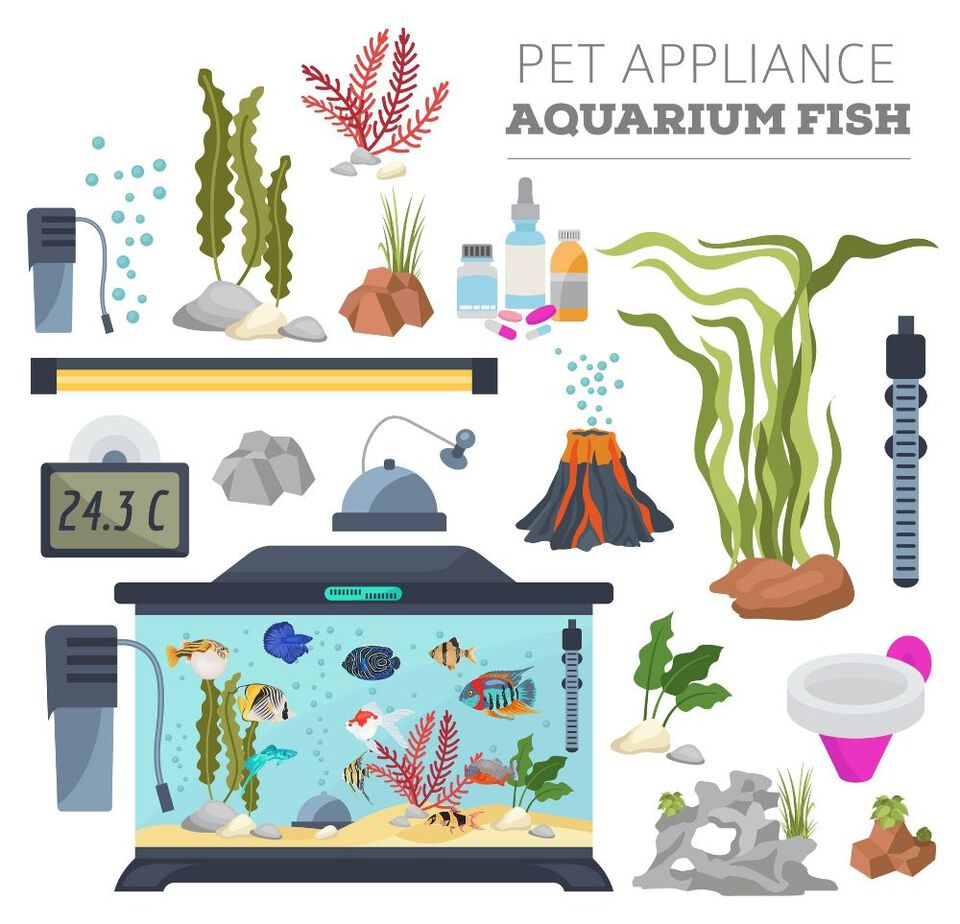 fish tank equipment