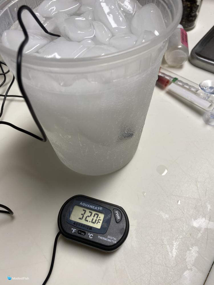thermometer ice bucket test