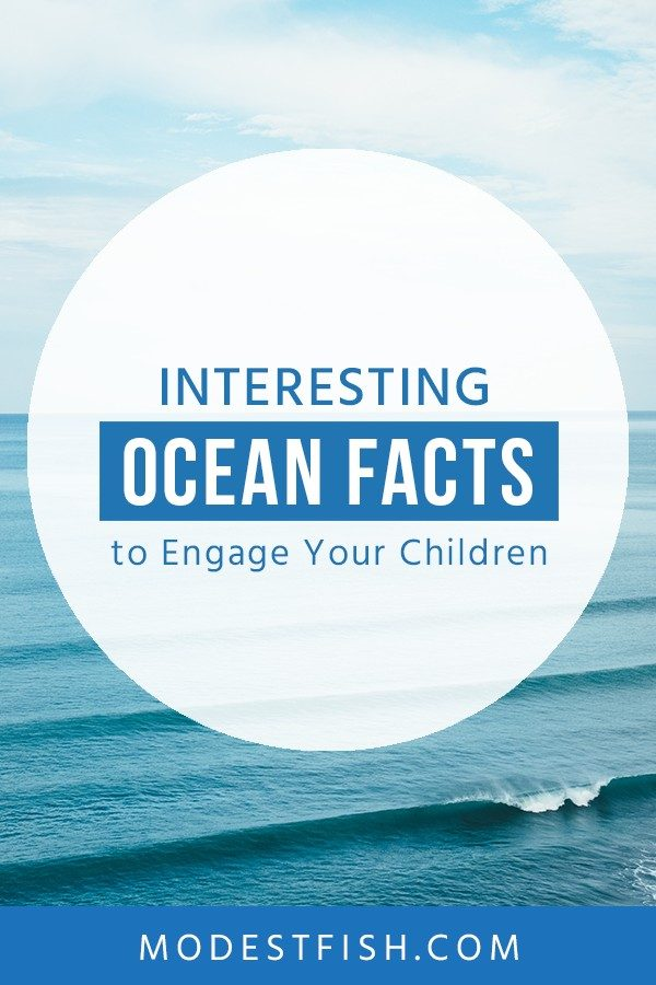 Check out these fun and interesting facts about the ocean and help your kids learn more about why the ocean is so wonderful and needs help. #modestfish #ocean #environment