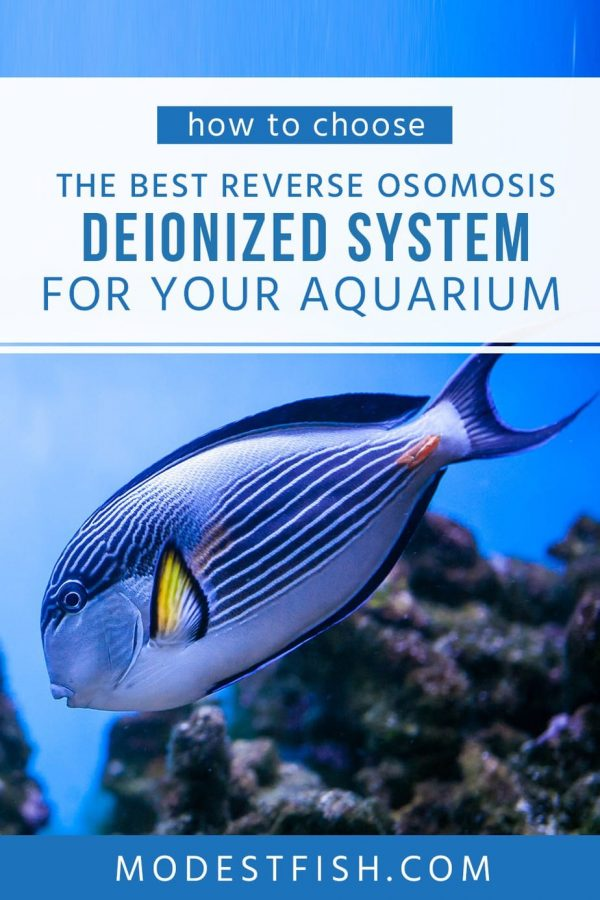 A reverse osmosis deionized system provide a healthy environment for your fish. In this article, you're going to learn how to select a RO/DI system products based on your needs. #aquariumfilter #modestfish